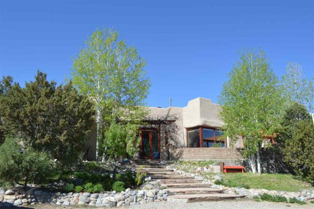 176 Acequia Madre Del Llano, Arroyo Hondo, NM 87513 (MLS #103328) :: Page Sullivan Group | Coldwell Banker Mountain Properties
