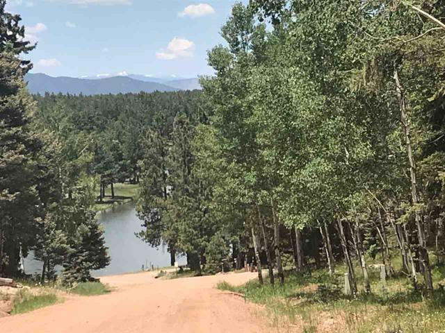 8 Lakeview Park Dr, Angel Fire, NM 87710 (MLS #103358) :: Page Sullivan Group | Coldwell Banker Mountain Properties