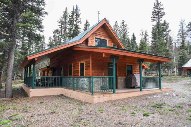 562 Highway 578, Red River, NM 87558 (MLS #103450) :: The Chisum Realty Group