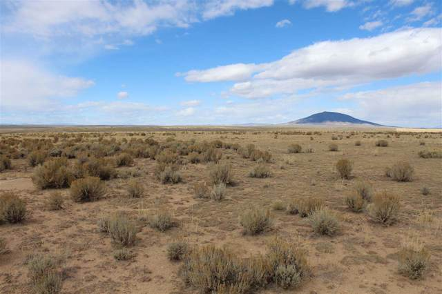 13 Cerro Area, Questa, NM 87556 (MLS #103493) :: Chisum Realty Group