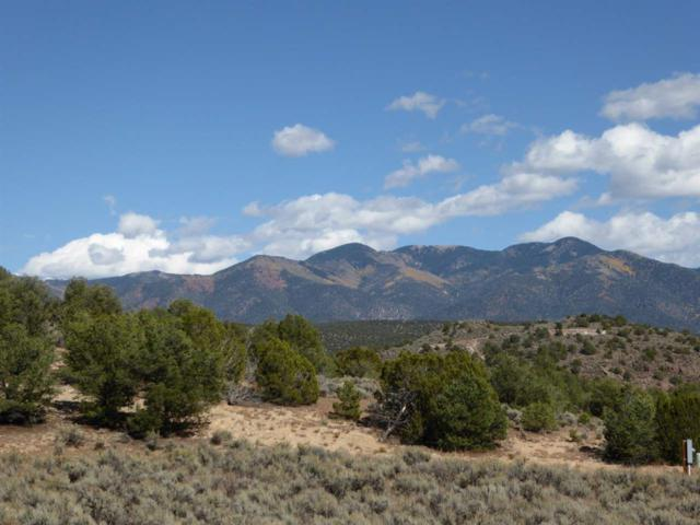 B001 Trementina Trail, Arroyo Hondo, NM 87513 (MLS #103555) :: Page Sullivan Group | Coldwell Banker Mountain Properties