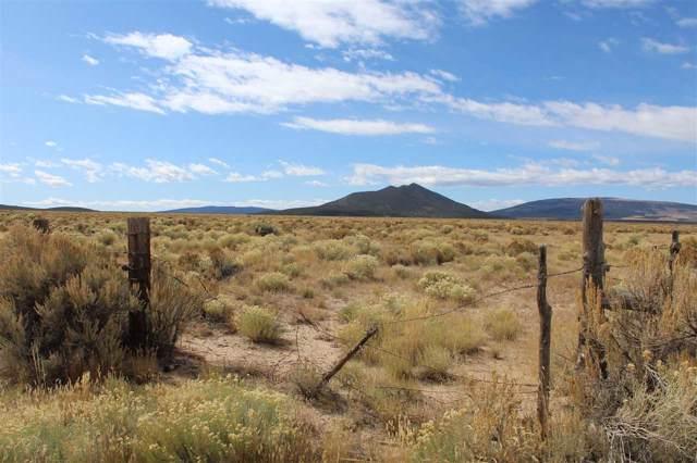 Tract 12 Cerro Area, Questa, NM 87556 (MLS #103605) :: Chisum Realty Group