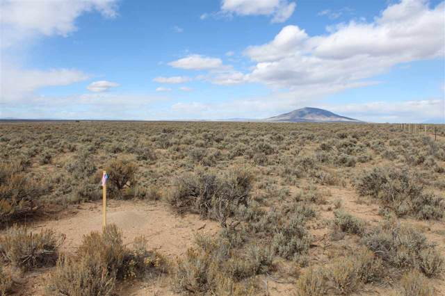 Tract 11 Cerro Area, Questa, NM 87556 (MLS #103606) :: Chisum Realty Group