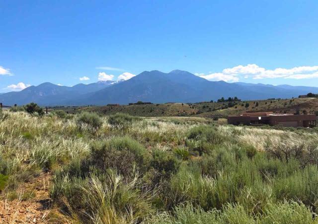 Nighthawk Trail, El Prado, NM 87529 (MLS #103619) :: The Chisum Realty Group