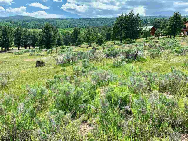 Lot 1237 Candlewood Trail, Angel Fire, NM 87710 (MLS #103664) :: Page Sullivan Group | Coldwell Banker Mountain Properties