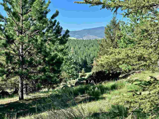 Lot 1280A Torrey Pines Lane, Angel Fire, NM 87710 (MLS #103751) :: Page Sullivan Group | Coldwell Banker Mountain Properties