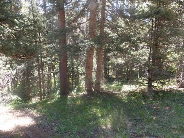 Lot 118 and 119 Wheeler Peak, Red River, NM 87558 (MLS #103779) :: Page Sullivan Group