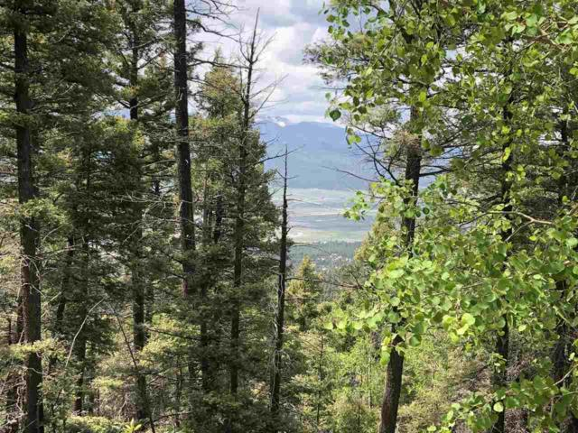 Lot 596A Panorama, Angel Fire, NM 87710 (MLS #103784) :: Angel Fire Real Estate & Land Co.