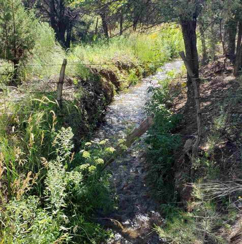 63 Tract A Acequia Madre Del Llano Rd, Arroyo Hondo, NM 87513 (MLS #103984) :: Page Sullivan Group | Coldwell Banker Mountain Properties