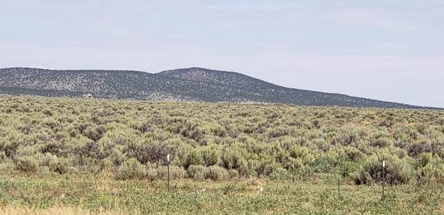Off West Rim Road, Taos, NM 87571 (MLS #104051) :: Page Sullivan Group | Coldwell Banker Mountain Properties