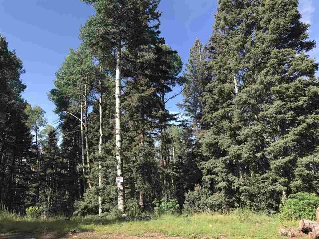 0 E Starlight, Angel Fire, NM 87710 (MLS #104060) :: Angel Fire Real Estate & Land Co.