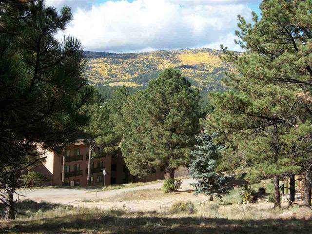 Mammoth Mountain Road, Angel Fire, NM 87710 (MLS #104114) :: Page Sullivan Group