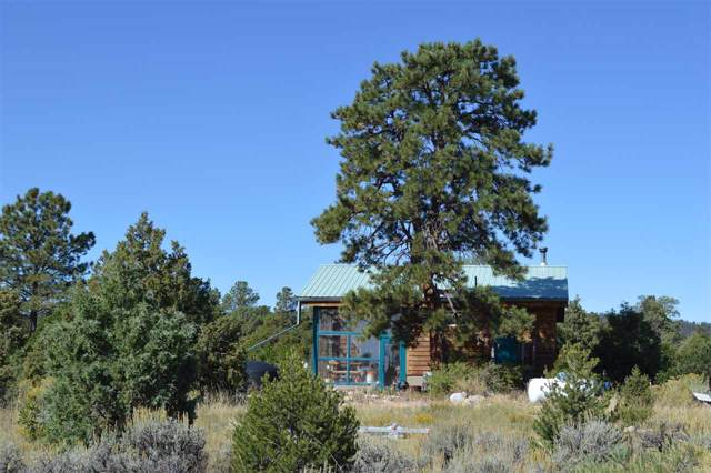 00 Fr 222, Tres Piedras, NM 87577 (MLS #104206) :: Angel Fire Real Estate & Land Co.
