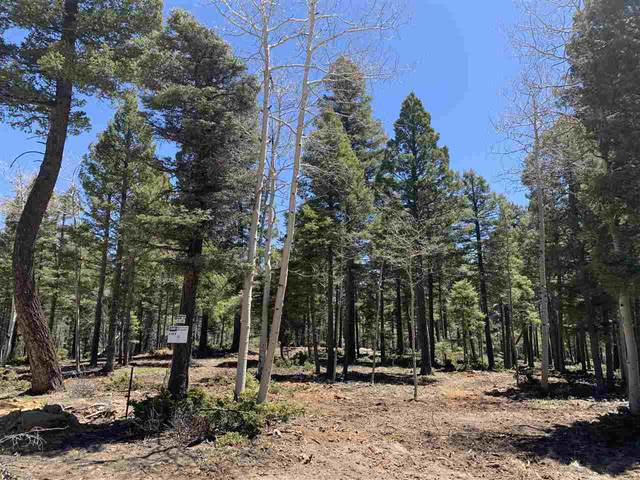 Vermejo Cir, Angel Fire, NM 87710 (MLS #104469) :: Page Sullivan Group
