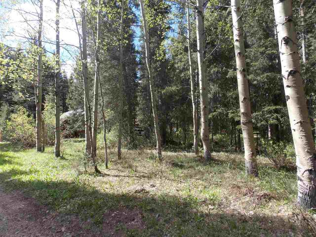 TBD Valley Road, Red River, NM 87558 (MLS #104525) :: The Chisum Realty Group