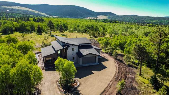 31 Beaver Loop, Angel Fire, NM 87710 (MLS #104547) :: Page Sullivan Group