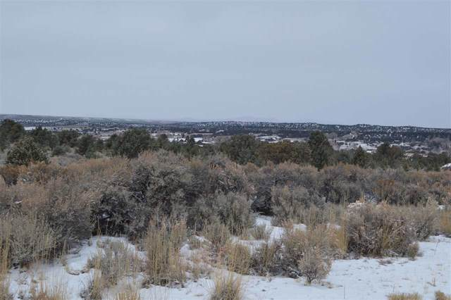 Lot 5E Tune Drive, El Prado, NM 87529 (MLS #104575) :: Page Sullivan Group | Coldwell Banker Mountain Properties