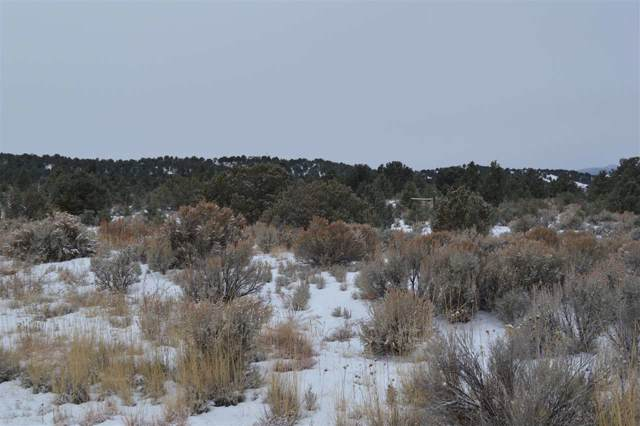 Tract 5D Tune Drive, El Prado, NM 87529 (MLS #104576) :: Page Sullivan Group | Coldwell Banker Mountain Properties
