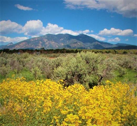 Cottontail Rd, Taos, NM 87571 (MLS #104623) :: Page Sullivan Group