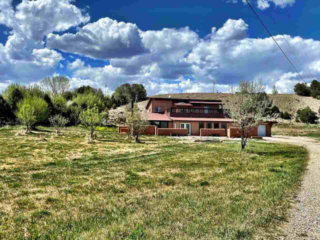 67 Lower Arroyo Hondo Road, Arroyo Hondo, NM 87513 (MLS #104779) :: Page Sullivan Group