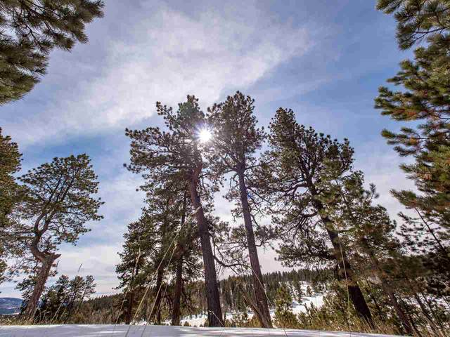 Lot 3 Laguna Negra Circle, Angel Fire, NM 87710 (MLS #104803) :: The Chisum Realty Group