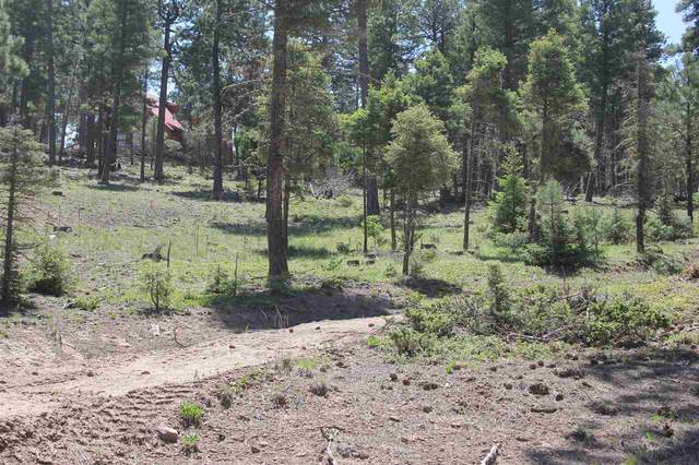 1581 Luna Drive, Angel Fire, NM 87710 (MLS #104813) :: The Chisum Realty Group