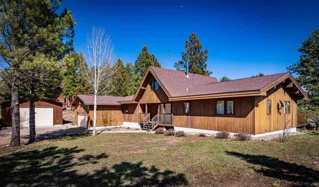 94 Cimarron Trail, Angel Fire, NM 87710 (MLS #105021) :: Angel Fire Real Estate & Land Co.