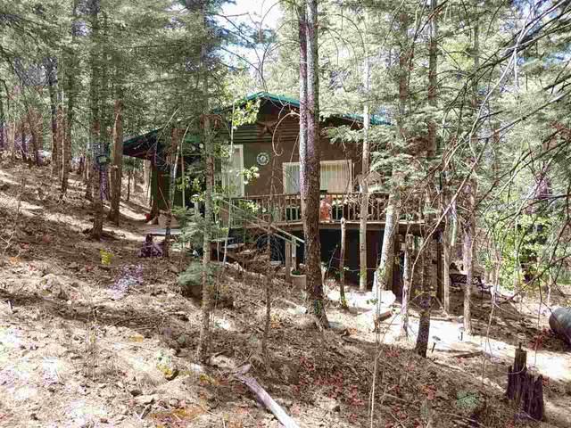 19 Ellen Pl, Guadalupita, NM 87722 (MLS #105121) :: Angel Fire Real Estate & Land Co.