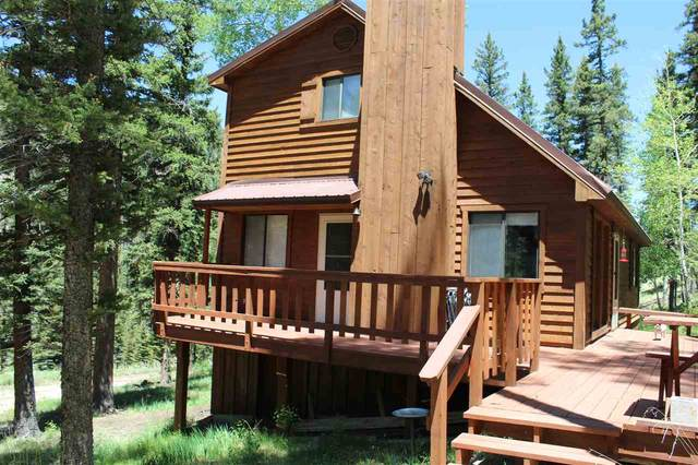 55 Spruce Avenue, Red River, NM 87558 (MLS #105213) :: Angel Fire Real Estate & Land Co.