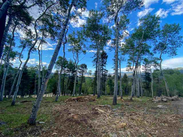 308A Rio Arriba, Angel Fire, NM 87710 (MLS #105322) :: Page Sullivan Group