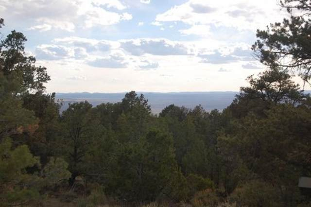 off Camino Del Medio, San Cristobal, NM 87564 (MLS #105451) :: Angel Fire Real Estate & Land Co.