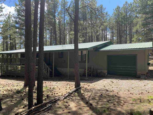 21 Cimarron Trail, Angel Fire, NM 87710 (MLS #105538) :: Angel Fire Real Estate & Land Co.