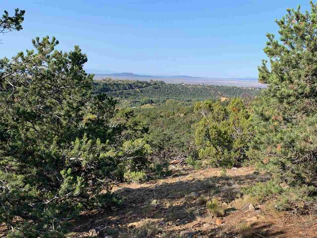 Tract H Cerrito Colorado, Valdez, NM 87580 (MLS #105784) :: The Chisum Realty Group