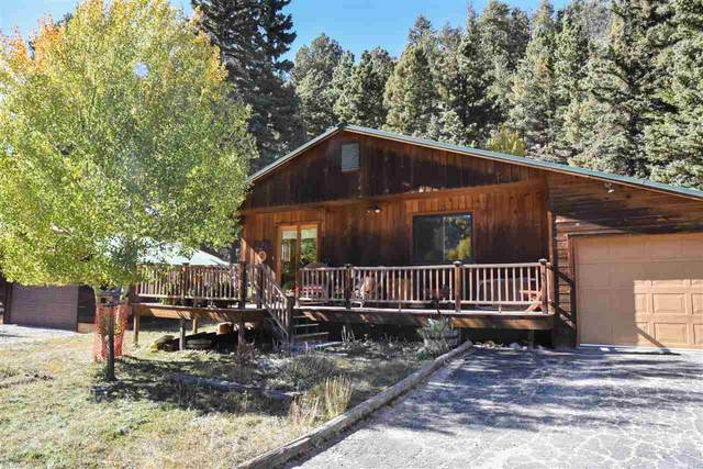 309 Bitter Creek Trail, Red River, NM 87558 (MLS #105874) :: The Chisum Realty Group