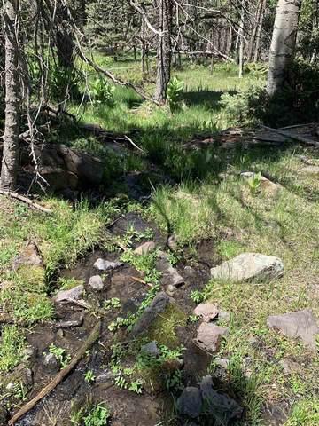 1138 Panorama Way N, Angel Fire, NM 87710 (MLS #106075) :: Chisum Realty Group