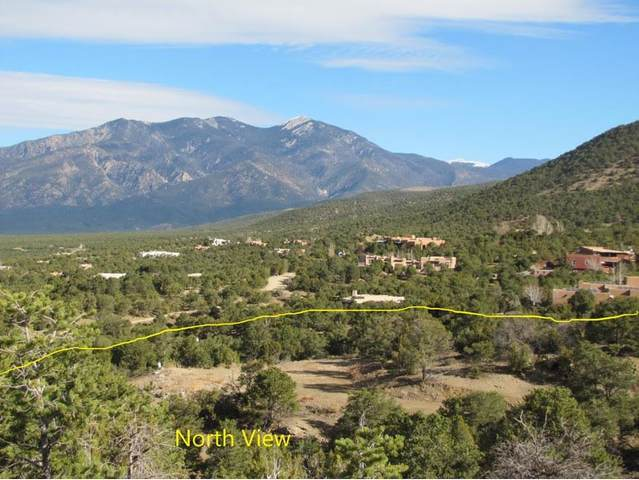 Sunset Bluebird Lane, Taos, NM 87571 (MLS #106150) :: Page Sullivan Group