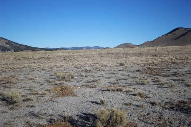 lot Smokey Bear Lane, Eagle Nest, NM 87718 (MLS #106164) :: Chisum Realty Group