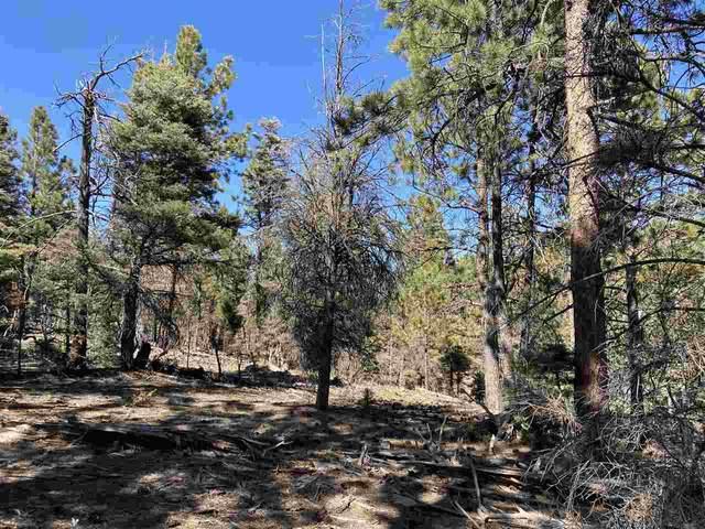 Lot 352 Vail Loop, Angel Fire, NM 87710 (MLS #106179) :: Coldwell Banker Mountain Properties