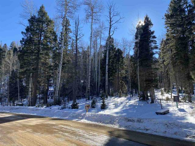 Lot 1282 Via Del Rey, Angel Fire, NM 87710 (MLS #106255) :: Page Sullivan Group