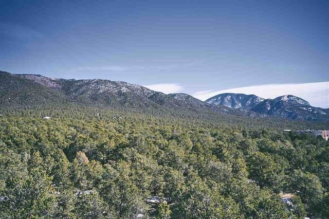 Deer Mesa Road, Valdez, NM 87580 (MLS #106376) :: Berkshire Hathaway Home Services