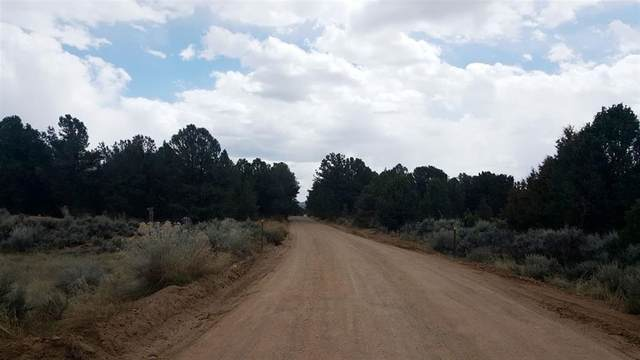 S Carson Road  40 Acres, Carson, NM 87517 (MLS #106452) :: Page Sullivan Group