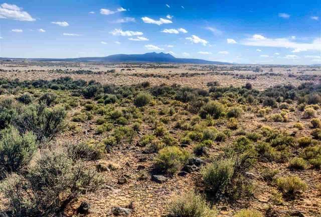 Lot 6 Fremont Drive Bald Eagle Subd, El Prado, NM 87529 (MLS #106794) :: Chisum Realty Group