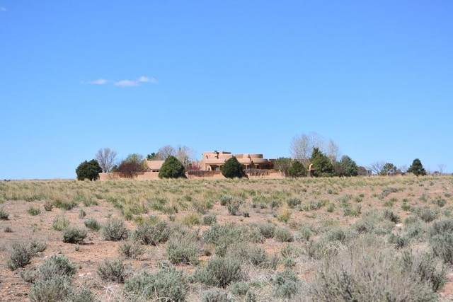 24070 Highway 64W, Taos, NM 87571 (MLS #106809) :: Chisum Realty Group
