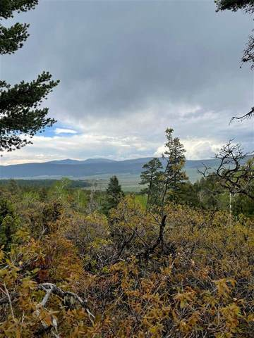 Lot 61 Taos Pines Ranch, Angel Fire, NM 87710 (MLS #107030) :: Berkshire Hathaway Home Services