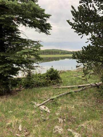 Lot 54 AB Hidden Lake Subdivision, Angel Fire, NM 87710 (MLS #107099) :: Chisum Realty Group