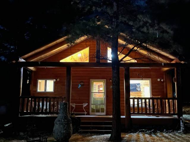 58 Pam Coleman, Angel Fire, NM 87710 (MLS #107174) :: Chisum Realty Group