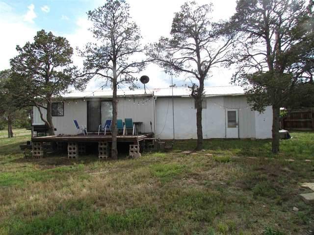 10 Rd 1001, Cimarron, NM 87714 (MLS #107231) :: Angel Fire Real Estate & Land Co.