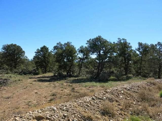 Game Garden Rd, Tres Piedras, NM 87577 (MLS #107240) :: Berkshire Hathaway Home Services