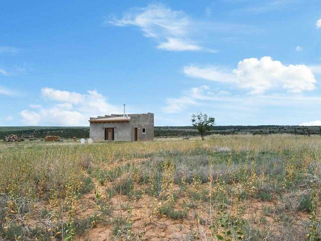 59 Fasthorse Road, Carson, NM 87517 (MLS #107293) :: Angel Fire Real Estate & Land Co.