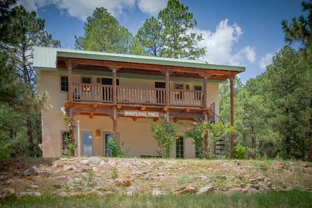 717 State Highway 434, Guadalupita, NM 87732 (MLS #107370) :: Chisum Realty Group